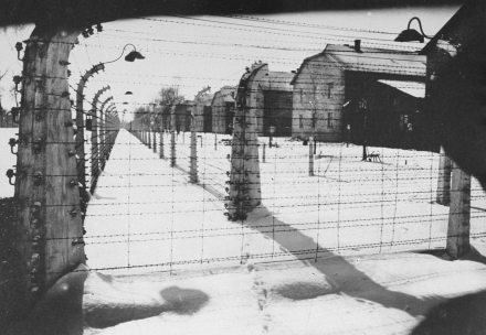 Auschwitz at the time of the liberation of the camp (Photo: United States Holocaust Memorial Museum**, courtesy of Philip Vock.)