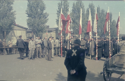 Im May 1945, former prisoners assemble outside for a ceremony with red and white flags in the newly liberated Dachau concentration camp. (Photo: United States Holocaust Memorial Museum, courtesy of Colonel Alexander Zabin.)